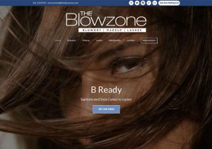 websites-blowzone-shot